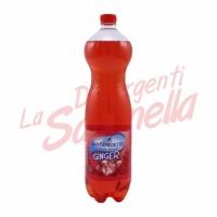 Suc San Benedetto cu ghimbir 1,5 L